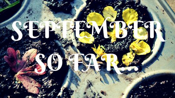 September so far…
