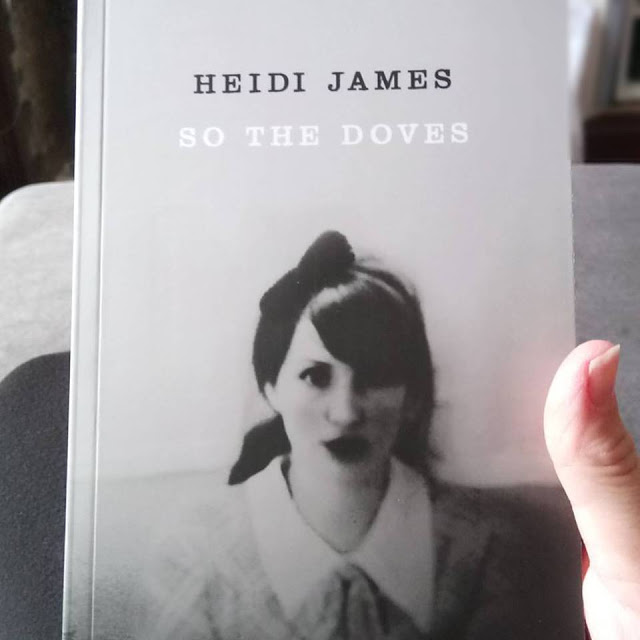Book Review: So The Doves by Heidi James.