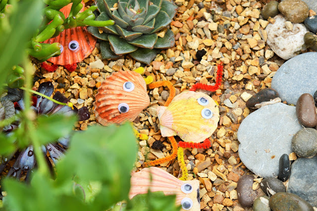 Shells with eyes and gravel.