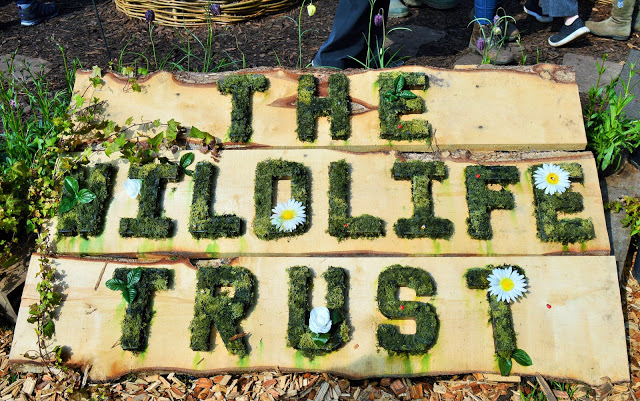 'The Wildlife trust' made from grass and daisies.