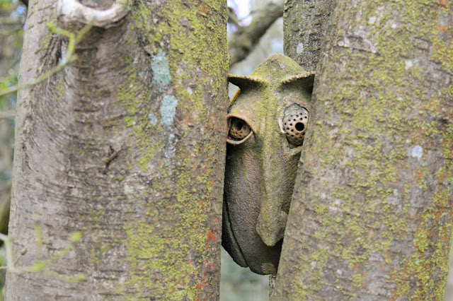 a little wooden face poking out between two trees at RHS.