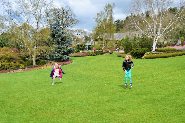 Green lawn with two children jumping up and down on it.