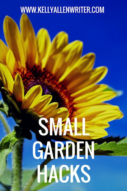 Pin 'small garden hacks'