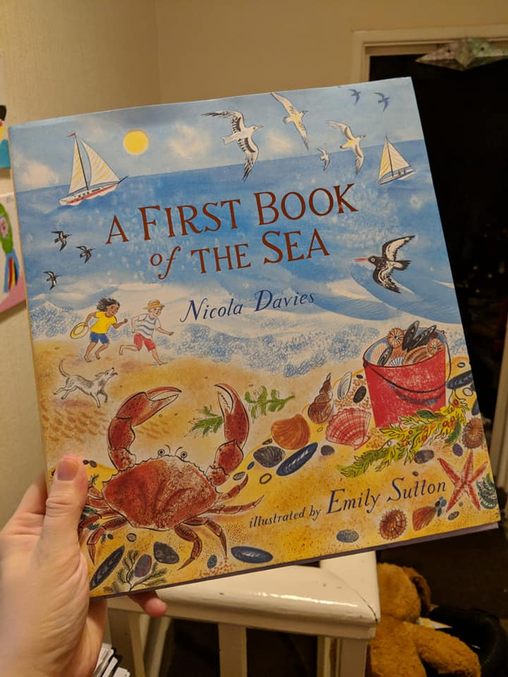Book Review: A First Book of the Sea by Nicola Davies